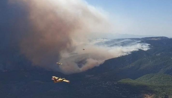Σε 4 μέτωπα η μάχη με τις φλόγες στην Εύβοια - Με το «πρώτο φως» ξεκίνησαν τις ρίψεις τα πυροσβεστικά αεροσκάφη (φωτο)
