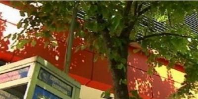 ΣΟΚ ΣΤΗ ΛΑΡΙΣΑ: ΖΗΤΟΥΣΕ ΦΑΓΗΤΟ ΓΙΑ 5 ΜΕΡΕΣ, ΤΟΝ ΑΓΝΟΟΥΣΑΝ ΚΑΙ ΜΕΤΑ ΚΡΕΜΑΣΤΗΚΕ! (VIDEO)