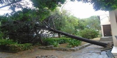 ΜΕΣΣΗΝΗ - Καταστροφές από την σφοδρή καταιγίδα