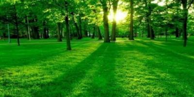 Η ομορφιά της φύσης σε ένα video!
